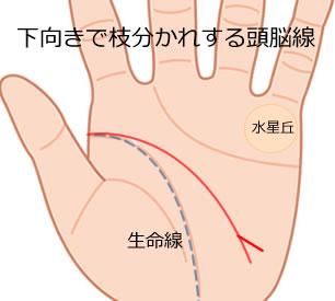 下向きで枝分かれする頭脳線の意味