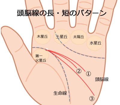 頭脳線の長短3つのパターン