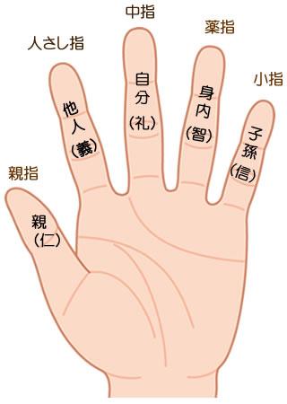 各指の持つ意味と長さの違いによる性格