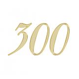 エンジェルナンバー 300