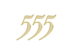 エンジェルナンバー 555
