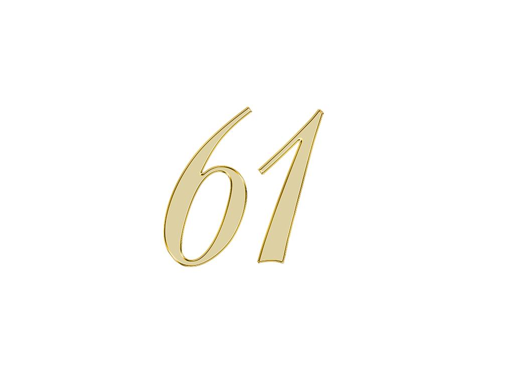 エンジェルナンバー 61