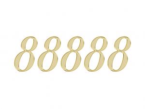 エンジェルナンバー 88888