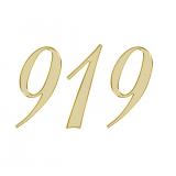 エンジェルナンバー 919