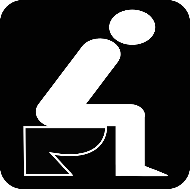 トイレ うんこ 夢
