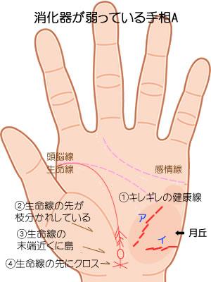 消化器が弱っている手相5つです。