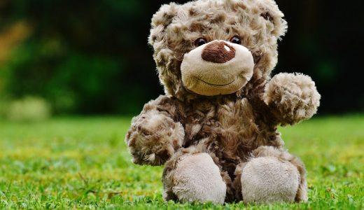 夢占いで熊の夢を見た時の解釈25選