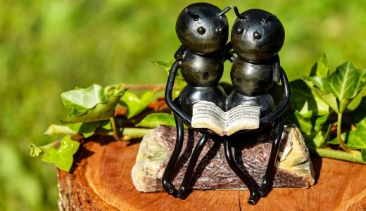 夢占いで蟻(アリ)の夢が意味するもの・解釈15選
