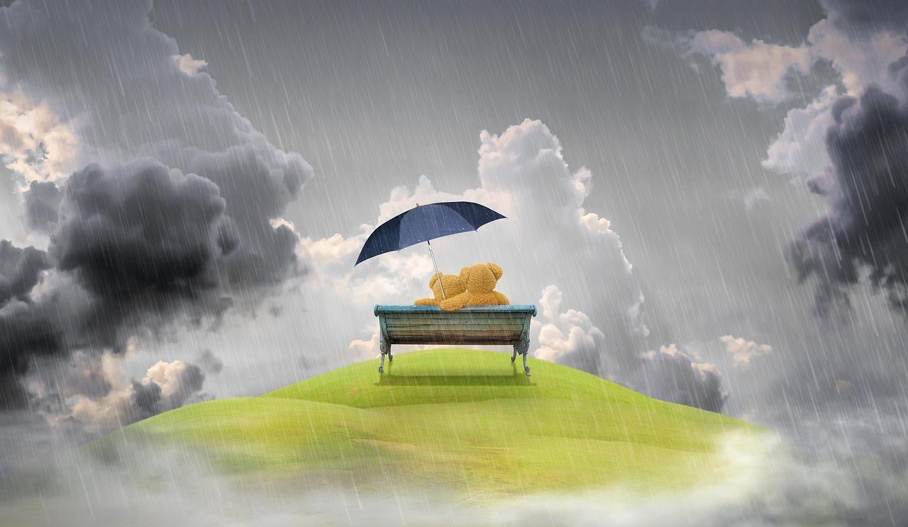 夢 占 い 傘