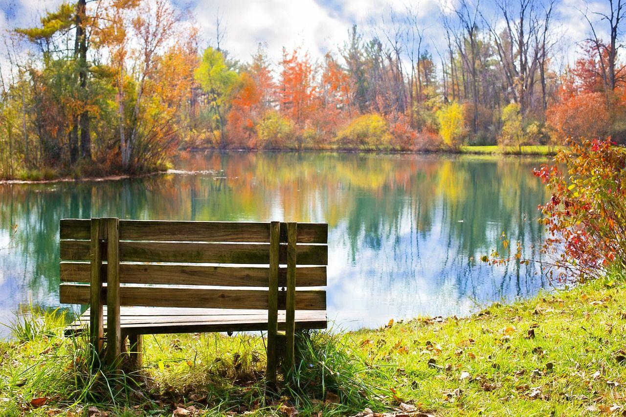 夢 占い 池