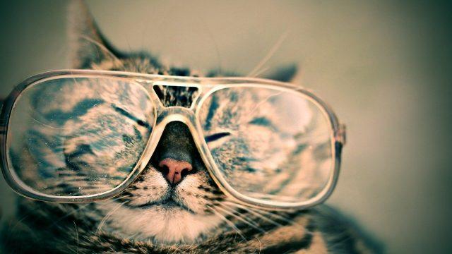 夢占い メガネ
