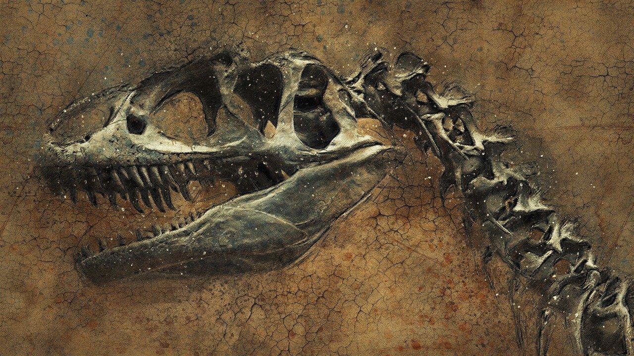 夢占い 恐竜